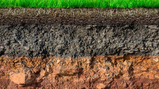 Soil analyzes