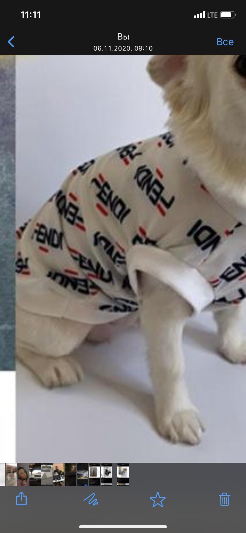 <p>Добрый день!</p>  <p>Закупаем одежду, обувь, аксессуары для собак мелких пород, gucci, Chanel, kenzo, Burberry. Объем закупа&nbsp;15000-50000 рублей. Просим написать на почту или Whats App т.к на звонки не всегда отвечаем.</p>
