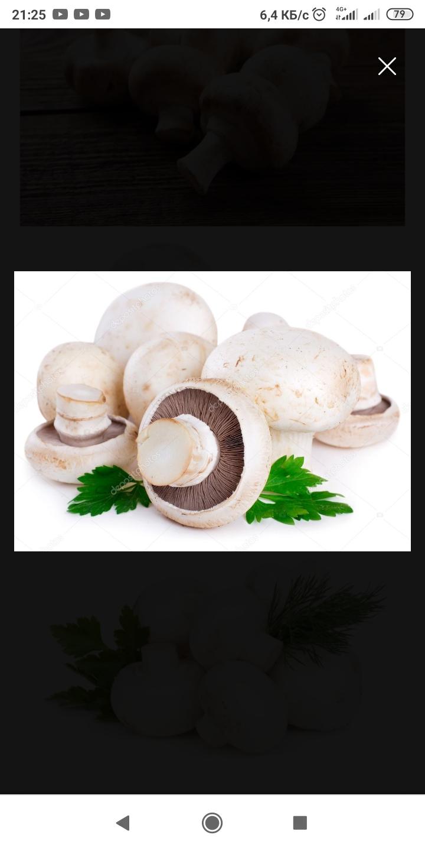 <p>yeşillikler (yeşil soğanlar, maydanoz, dereotu, nane, roka, fesleğen) ve champignon mantarı tedarik&ccedil;ileri arıyorum.&nbsp;Fiyat vermenizi bekliyorum. Kazakistan, Almatı. G&uuml;nde 100 kg</p>  <p><br /> <em>(rus&ccedil;adan terc&uuml;me edilmiştir)</em></p>